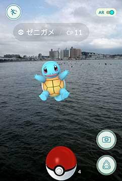 160828江の島猫ポケモンa.jpg