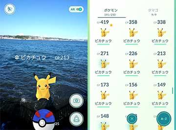 160828江の島猫ポケモンc.jpg