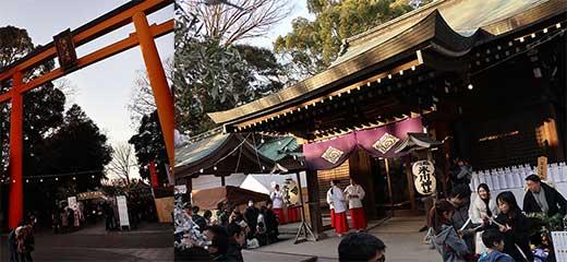 170109氷川神社a.jpg