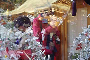 170109氷川神社dd.jpg