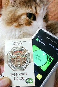 150730東京駅Suica-c.jpg