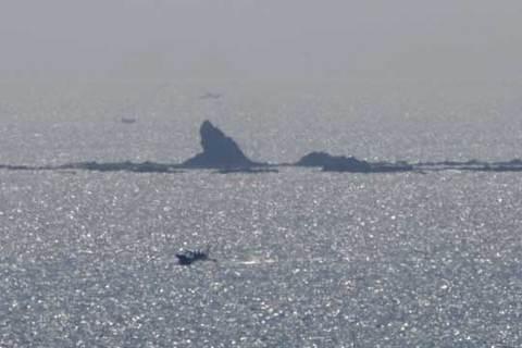 150817サメがウヨウヨ?.jpg