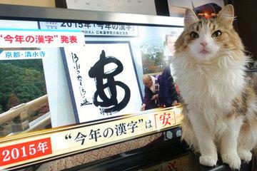 151215今年の漢字「安」.jpg