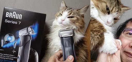 151215髭剃b.jpg