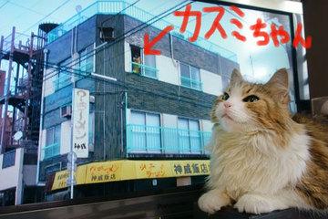 160127カスミちゃんの家.jpg