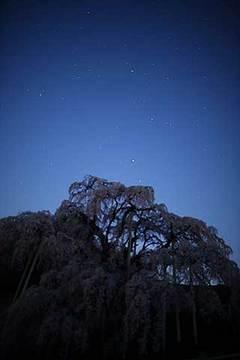 160412星空に.jpg