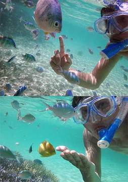 160623魚と戯れる.jpg