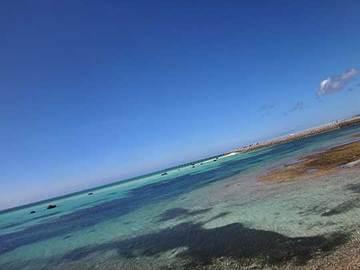 160627ニモの海a.jpg