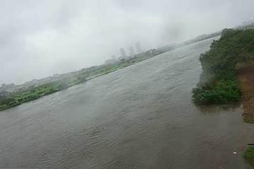 160822多摩川濁流.jpg