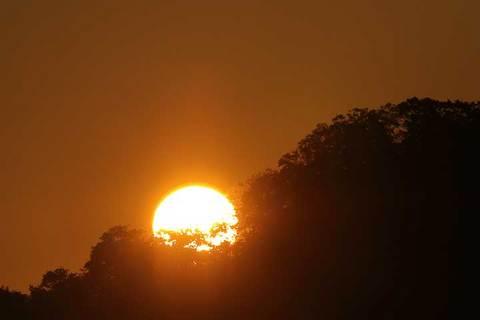 161118朝陽.jpg