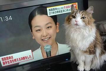 170413真央ちゃん引退.jpg