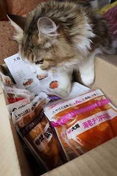 170523丼プレb.jpg
