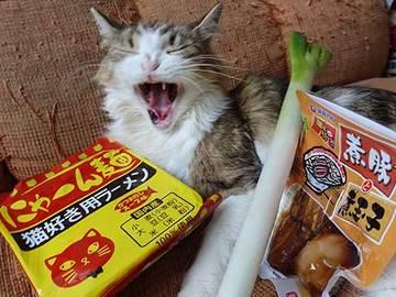 171018猫好き用ラーメンa.jpg