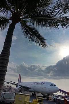 180509コナ空港b.jpg