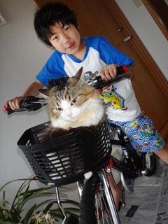 120723自転車で遊ぼう.jpg