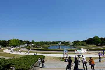 190509ひたち海浜公園f.jpg