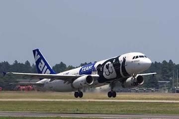 160619珍しい飛行機a.jpg