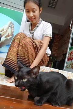 161108カワイイ猫とお嬢さん.jpg