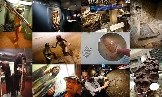170513自然歴史博物館d.jpg
