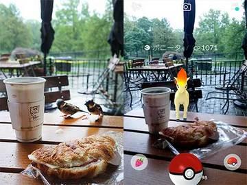 170517セントラルパークで朝食ポケモン.jpg