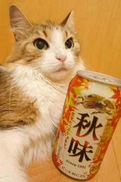 170825秋味.jpg