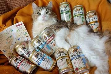 180710全国キリンビール.jpg