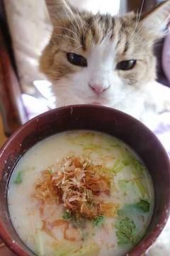190105白味噌雑煮.jpg