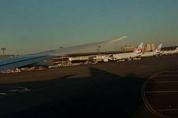 190222成田空港480.jpg
