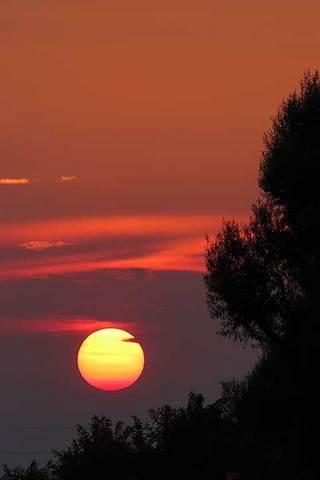 190803夕陽.jpg